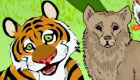 Jungle Animal Hidden Object Game