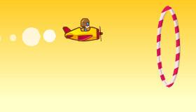 Pilot Acrobat